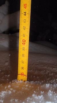 大雪2014.2.15.