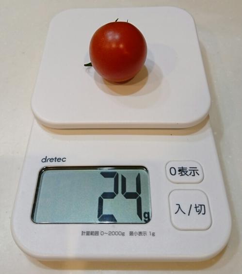 中玉ミニトマト